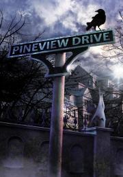Pineview Drive от gamersgate.com