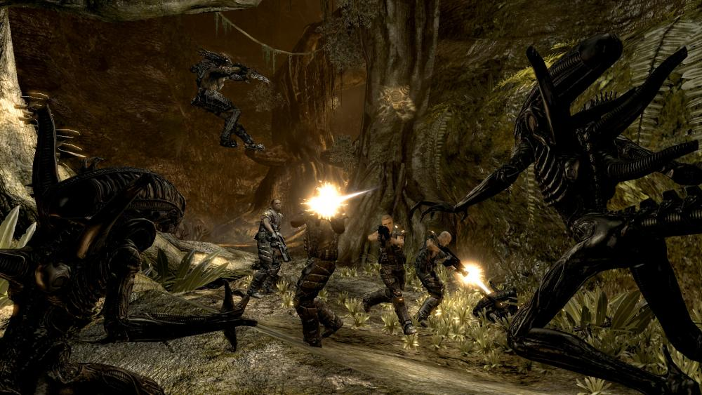 Compare aliens versus predator classic 2000 with my graphics cards